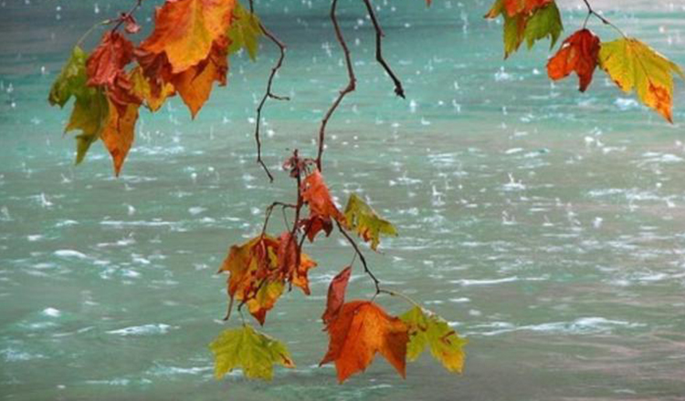 Schimbare radicală a vremii. Avertizare de Cod Galben și Cod Portocaliu de ploi
