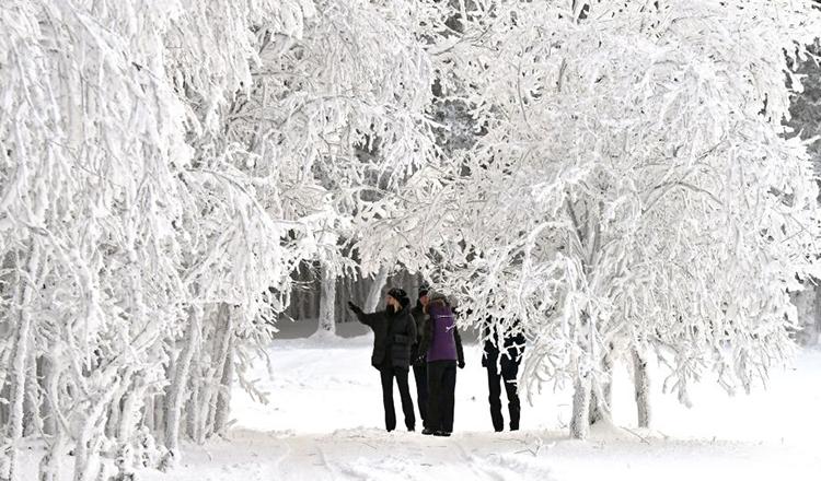 Alertă meteo! Vin ninsorile. Un val de aer polar pune stăpânire pe România