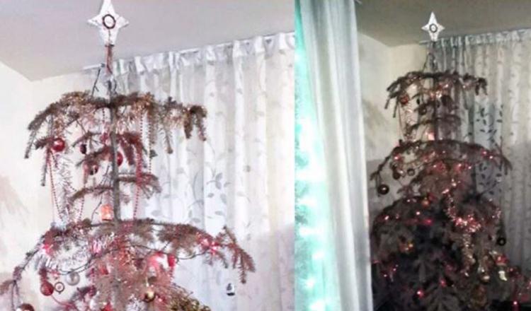 """Doi frați din Alba au acasă un brad natural împodobit de 14 ani. """"La noi e în permanență Crăciun"""""""